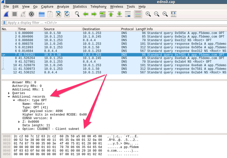 Lab – Use TCPdump and Wireshark to analyze DNS ends0 client subnet